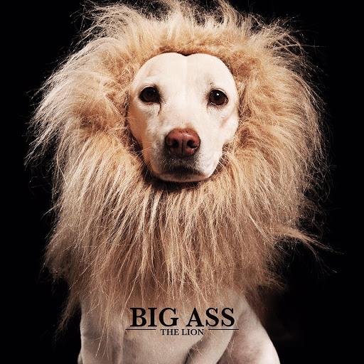 ba lion